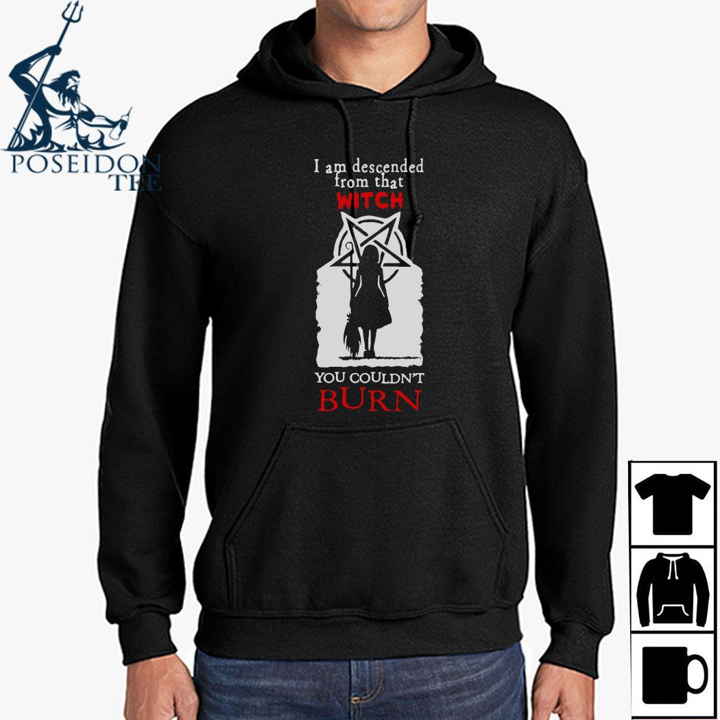 I Am Descended From That Witch You Couldn't Burn Shirt Hoodie